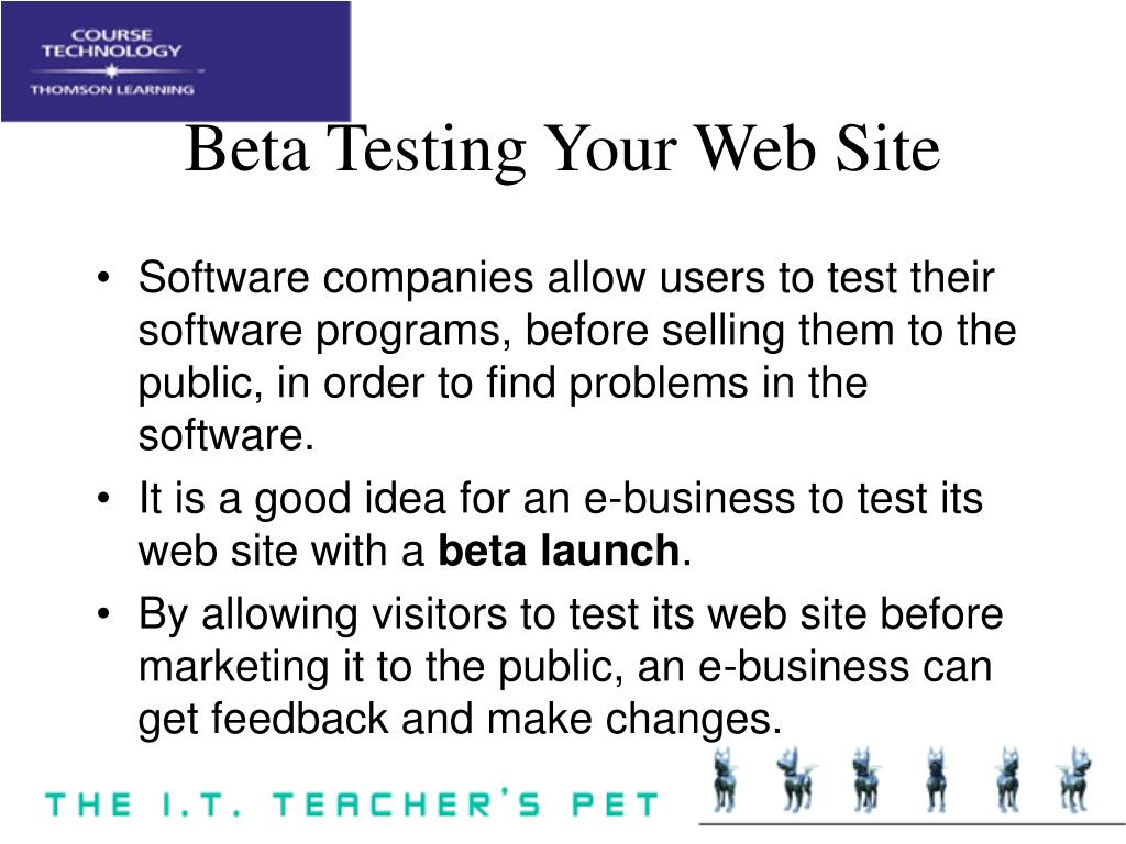 Beta Testing Your Web Site
