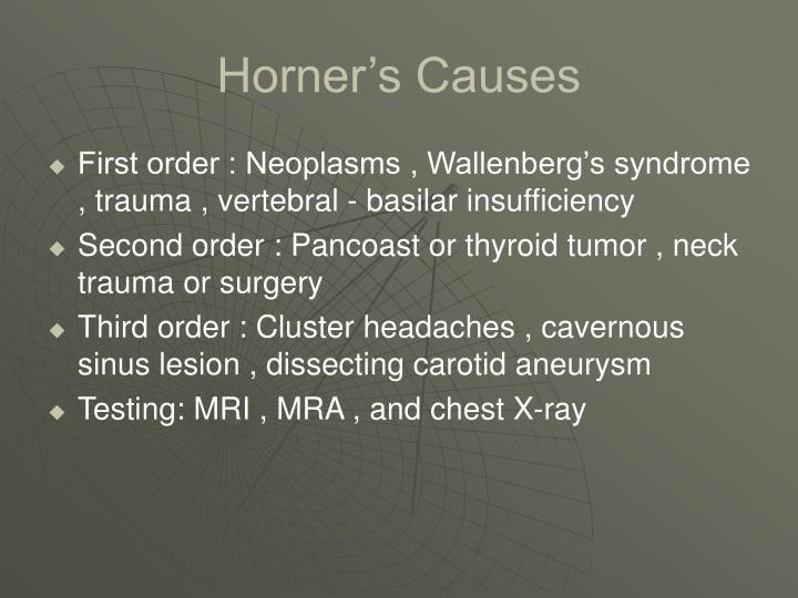 Horner's Causes