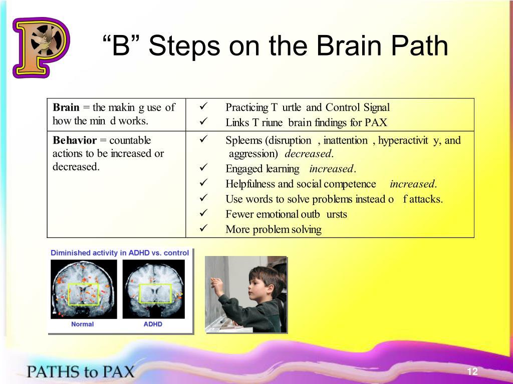 """B"" Steps on the Brain Path"