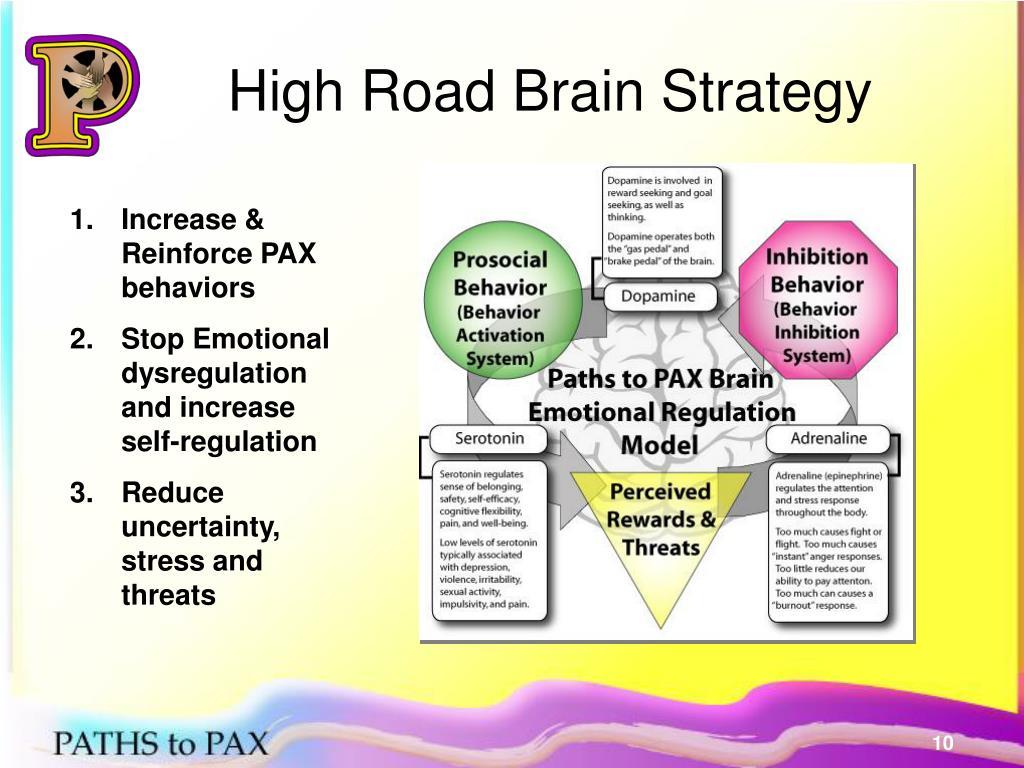 High Road Brain Strategy