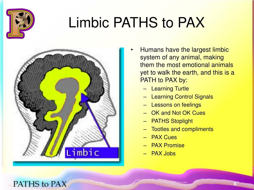Limbic PATHS to PAX