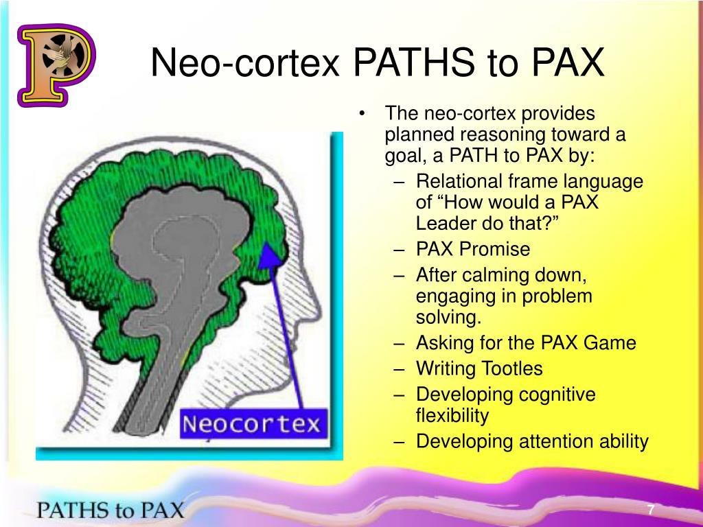 Neo-cortex PATHS to PAX