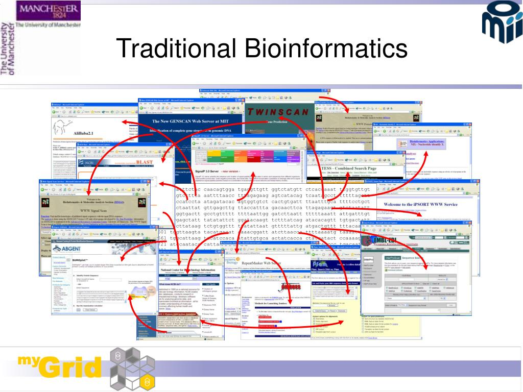 Traditional Bioinformatics