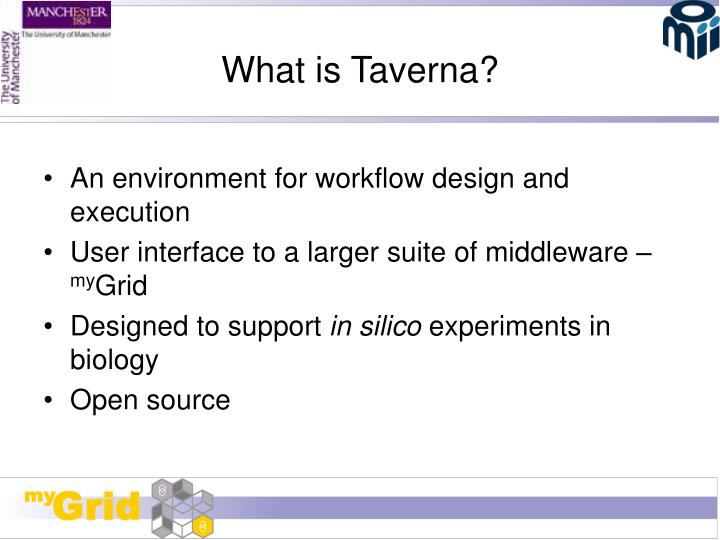 What is taverna