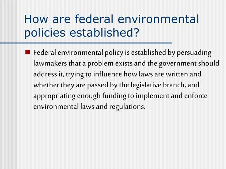 How are federal environmental policies established?