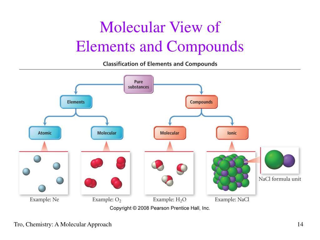Molecular View of