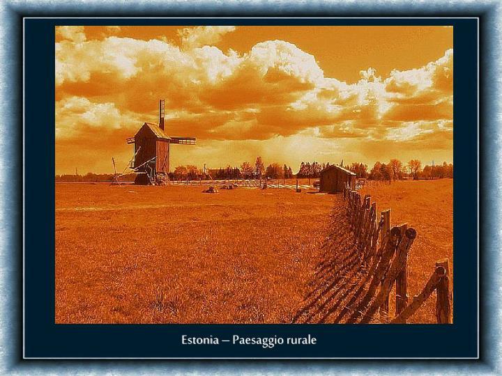 Estonia – Paesaggio rurale