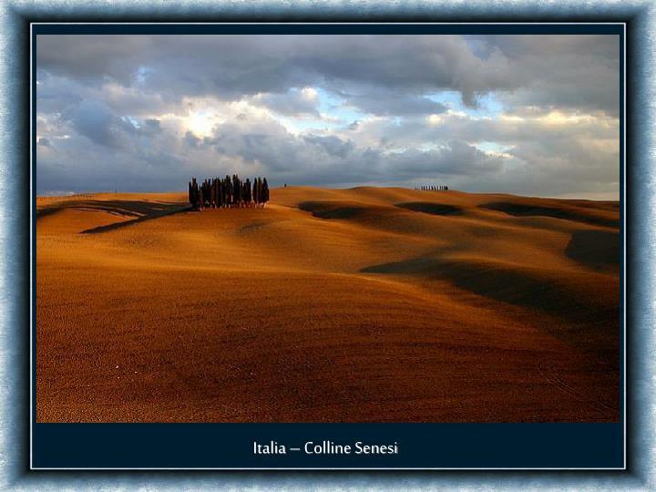 Italia – Colline Senesi
