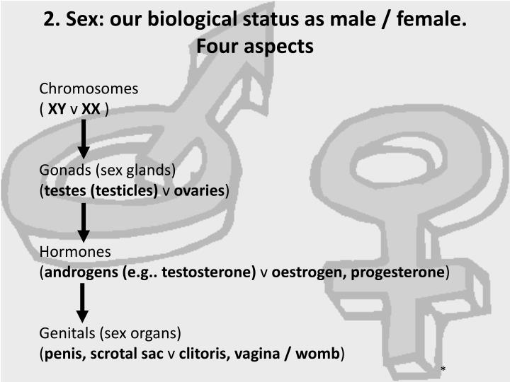 2. Sex: our biological status as male / female.