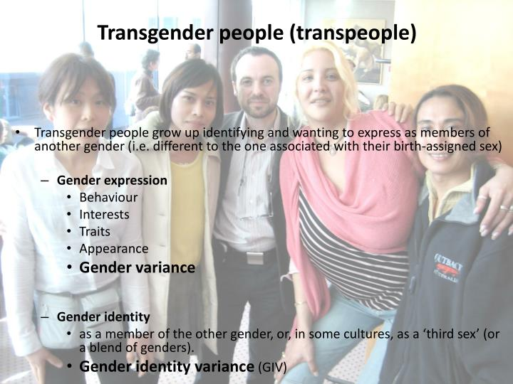 Transgender people (transpeople)