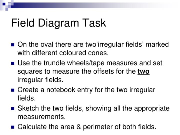 Field Diagram Task