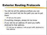 exterior routing protocols