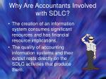 why are accountants involved with sdlc