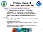 what are integrated ecosystem assessments