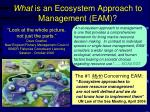 what is an ecosystem approach to management eam