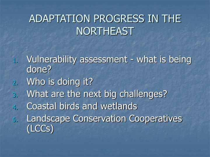 ADAPTATION PROGRESS IN THE NORTHEAST