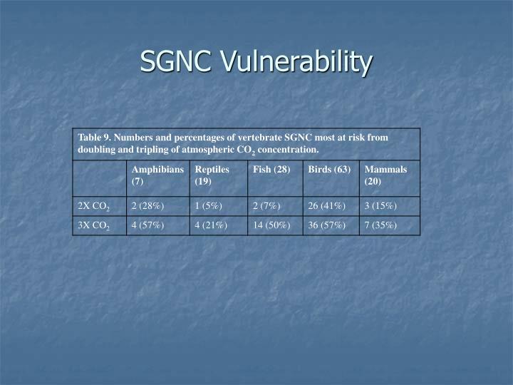 SGNC Vulnerability