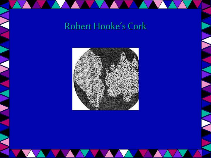 Robert Hooke's Cork