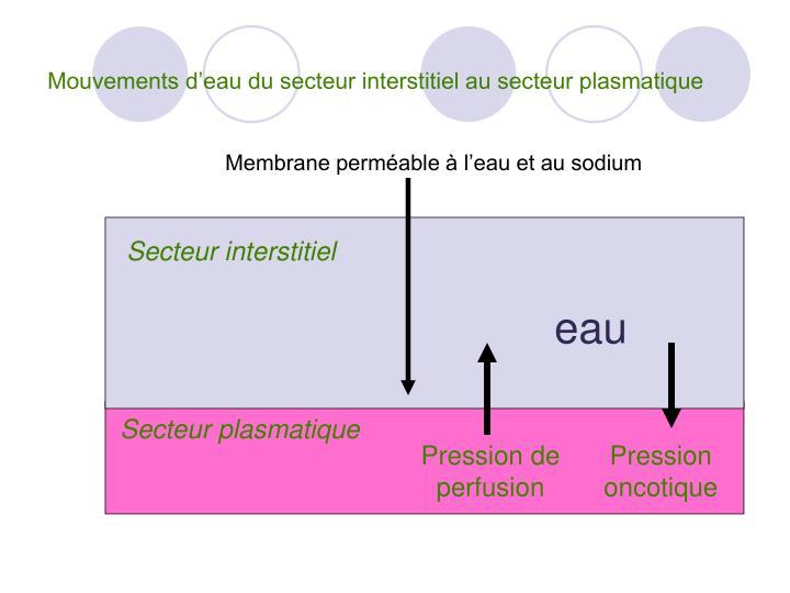 pression oncotique formule