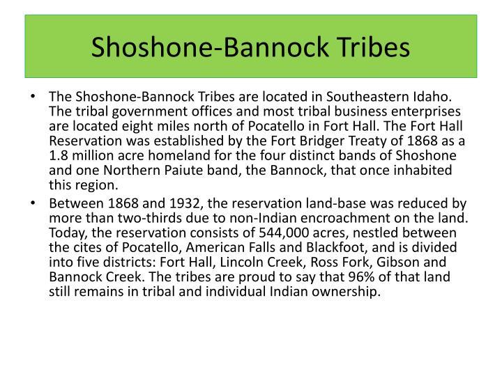 Shoshone-Bannock Tribes
