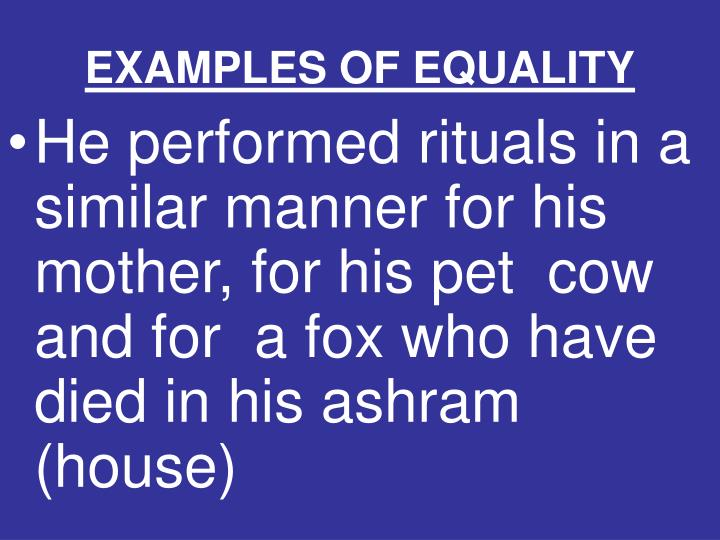 EXAMPLES OF EQUALITY