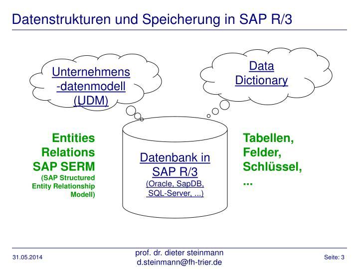 Datenstrukturen und Speicherung in SAP R/3
