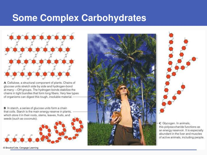 Some Complex Carbohydrates