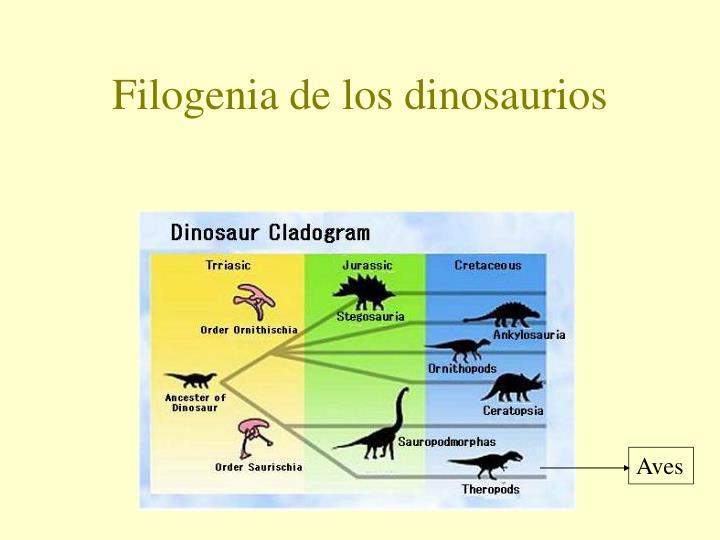 Filogenia de los dinosaurios