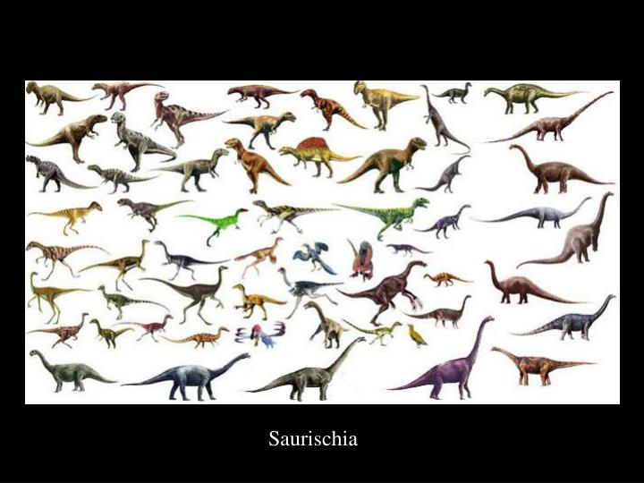 Saurischia