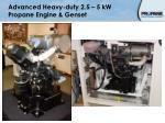 advanced heavy duty 2 5 5 kw propane engine genset