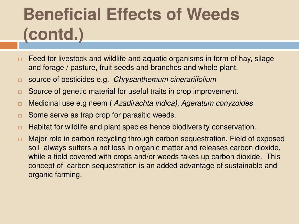 Beneficial Effects of Weeds (contd.)