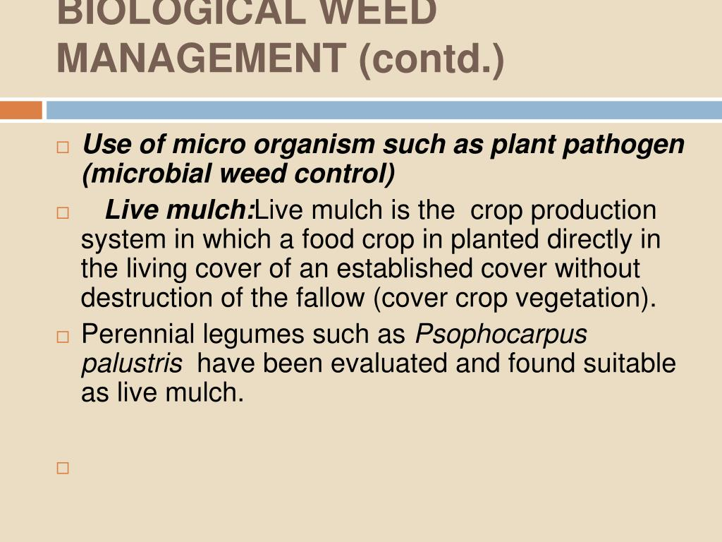 BIOLOGICAL WEED MANAGEMENT (contd.)