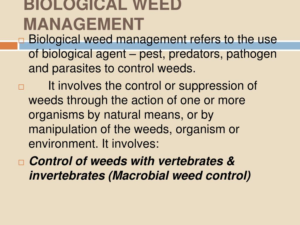 BIOLOGICAL WEED MANAGEMENT