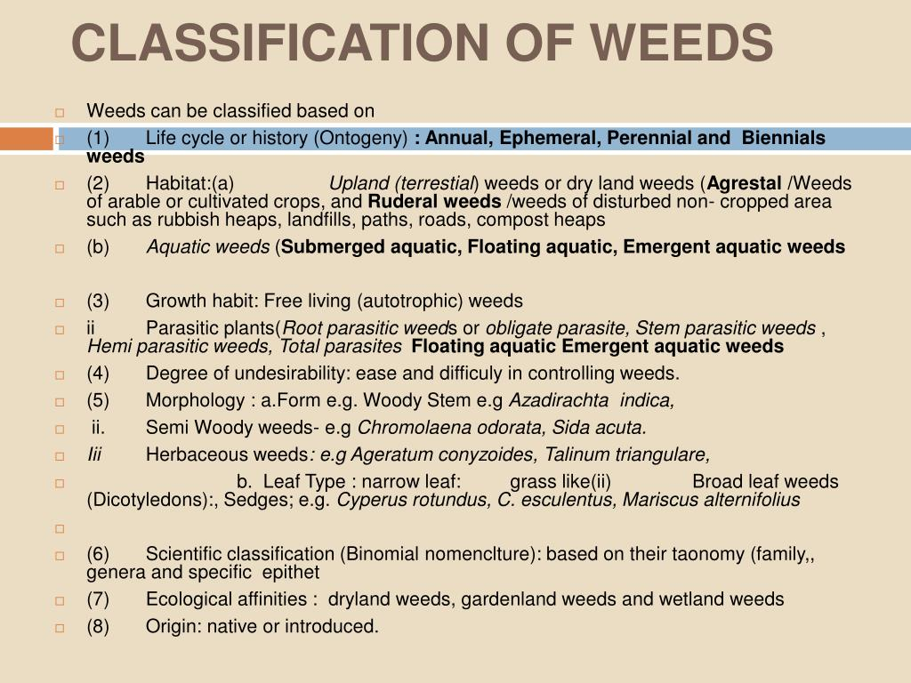 CLASSIFICATION OF WEEDS