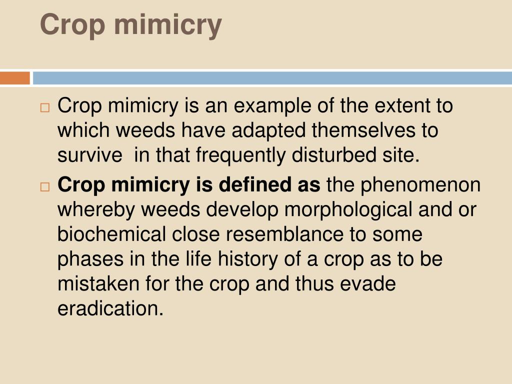 Crop mimicry