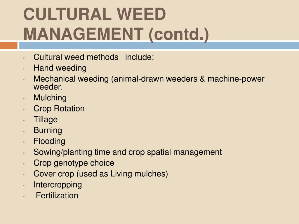 CULTURAL WEED MANAGEMENT (contd.)