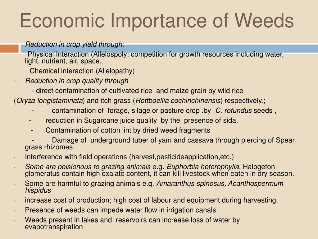 Economic Importance of Weeds