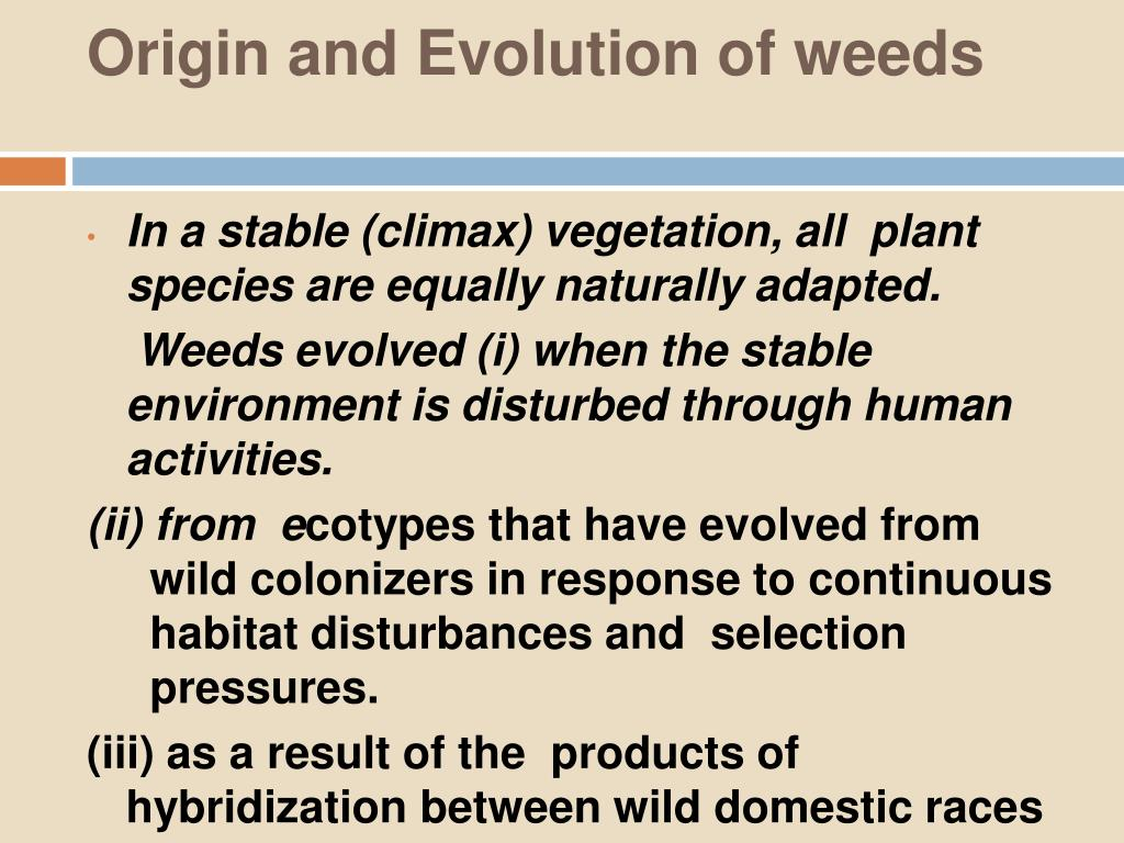 Origin and Evolution of weeds