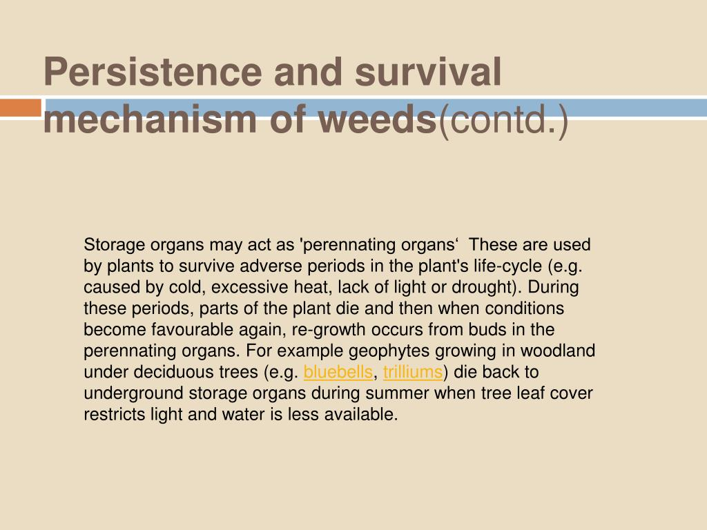 Persistence and survival mechanism of weeds