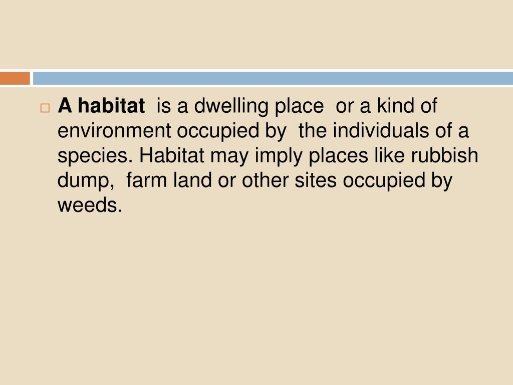 A habitat