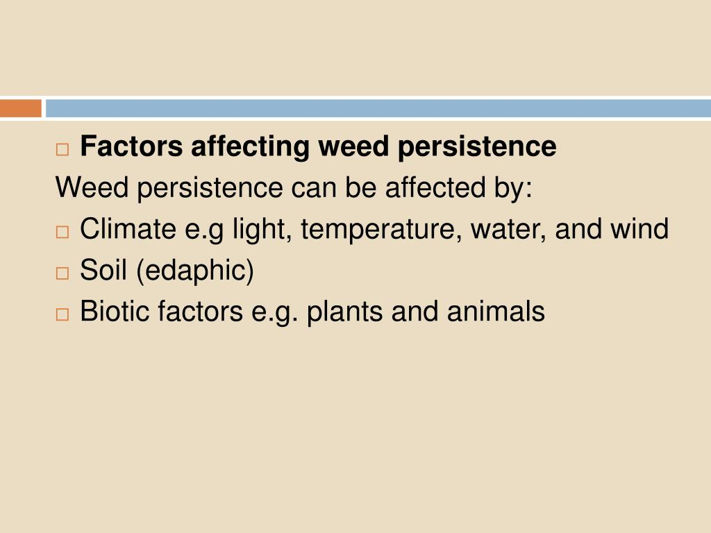 Factors affecting weed persistence