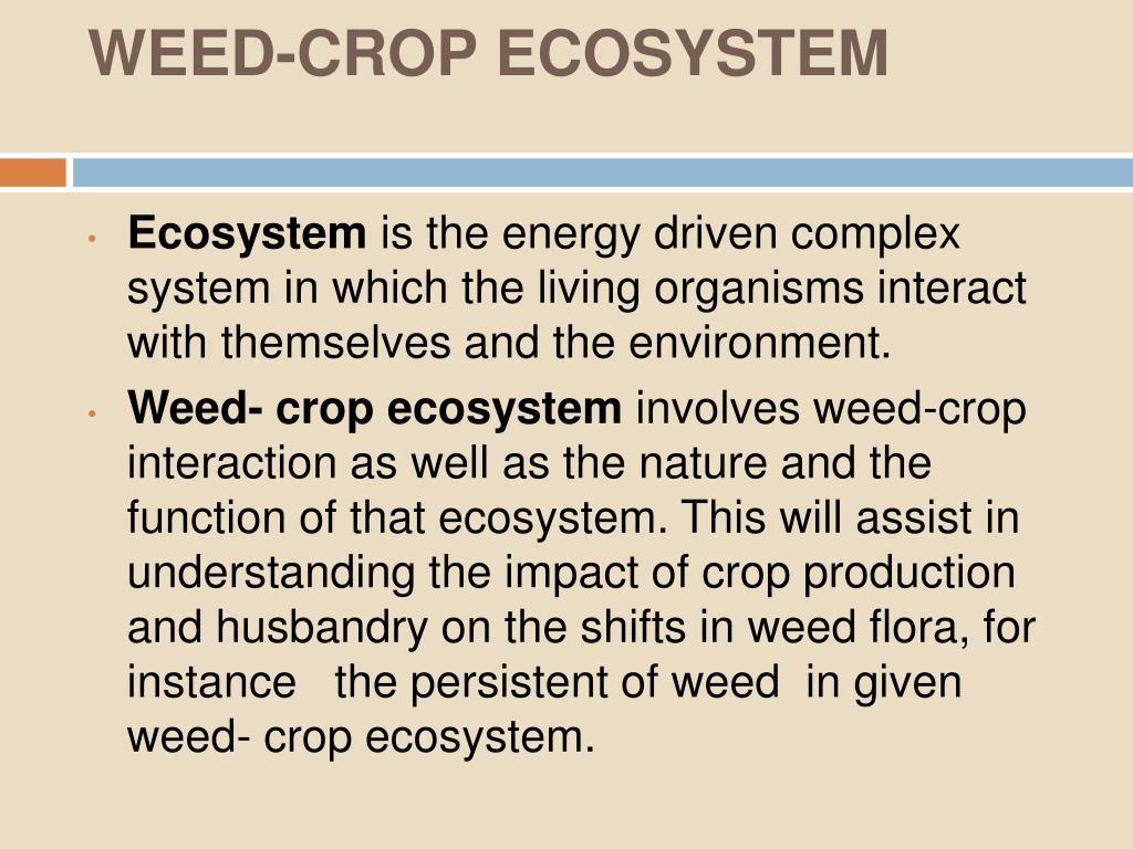 WEED-CROP ECOSYSTEM