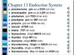 chapter 13 endocrine system5