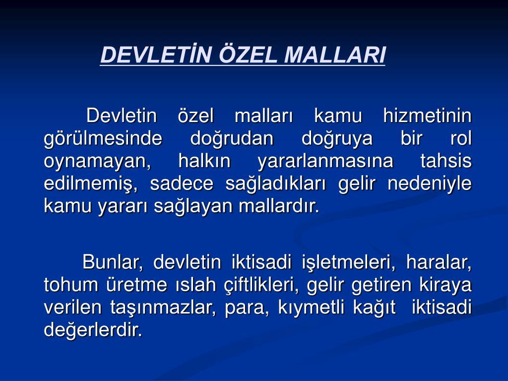 DEVLETİN ÖZEL MALLARI
