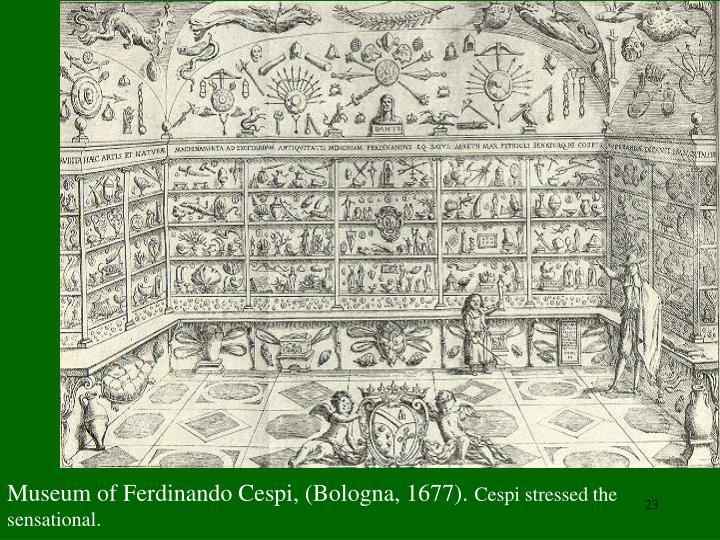 Museum of Ferdinando Cespi, (Bologna, 1677).