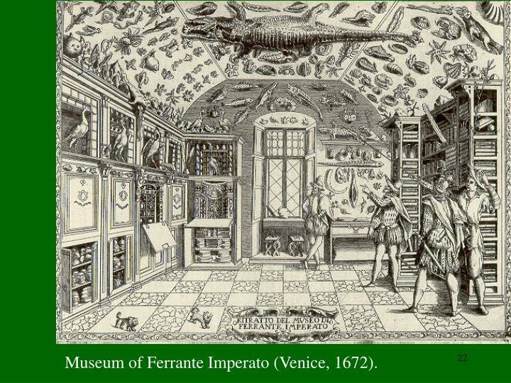 Museum of Ferrante Imperato