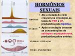 horm nios sexuais