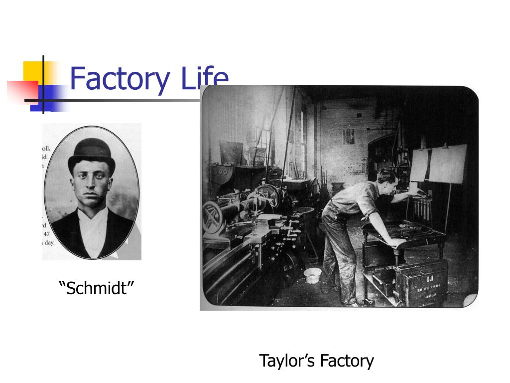 Factory Life