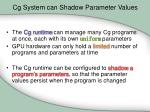 cg system can shadow parameter values