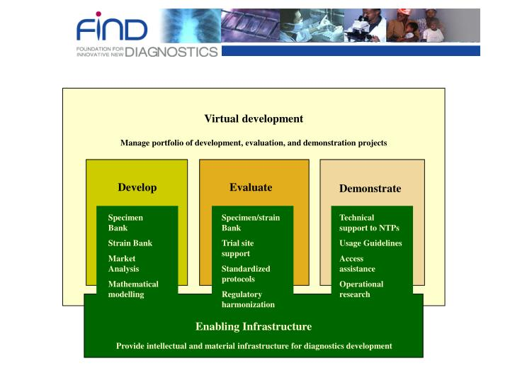 Virtual development